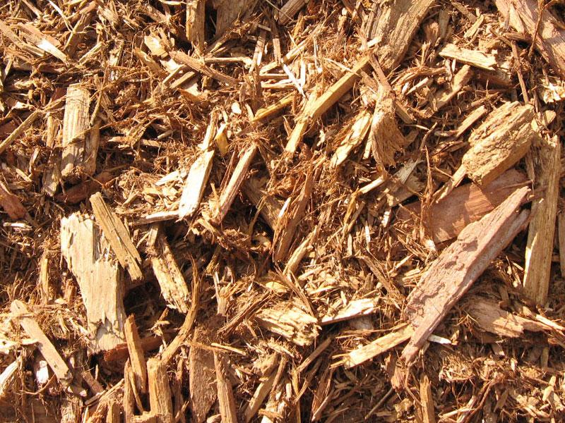 Cedar Mulch Wood Chips